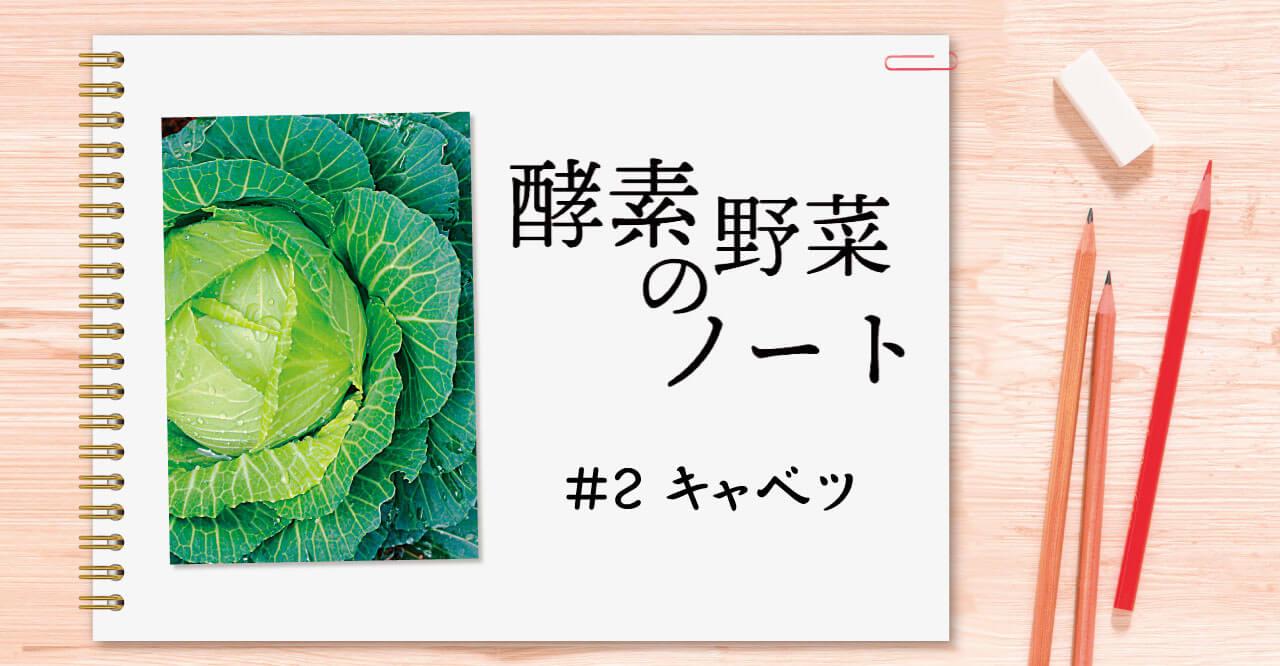 酵素野菜のノート #02 キャベツ